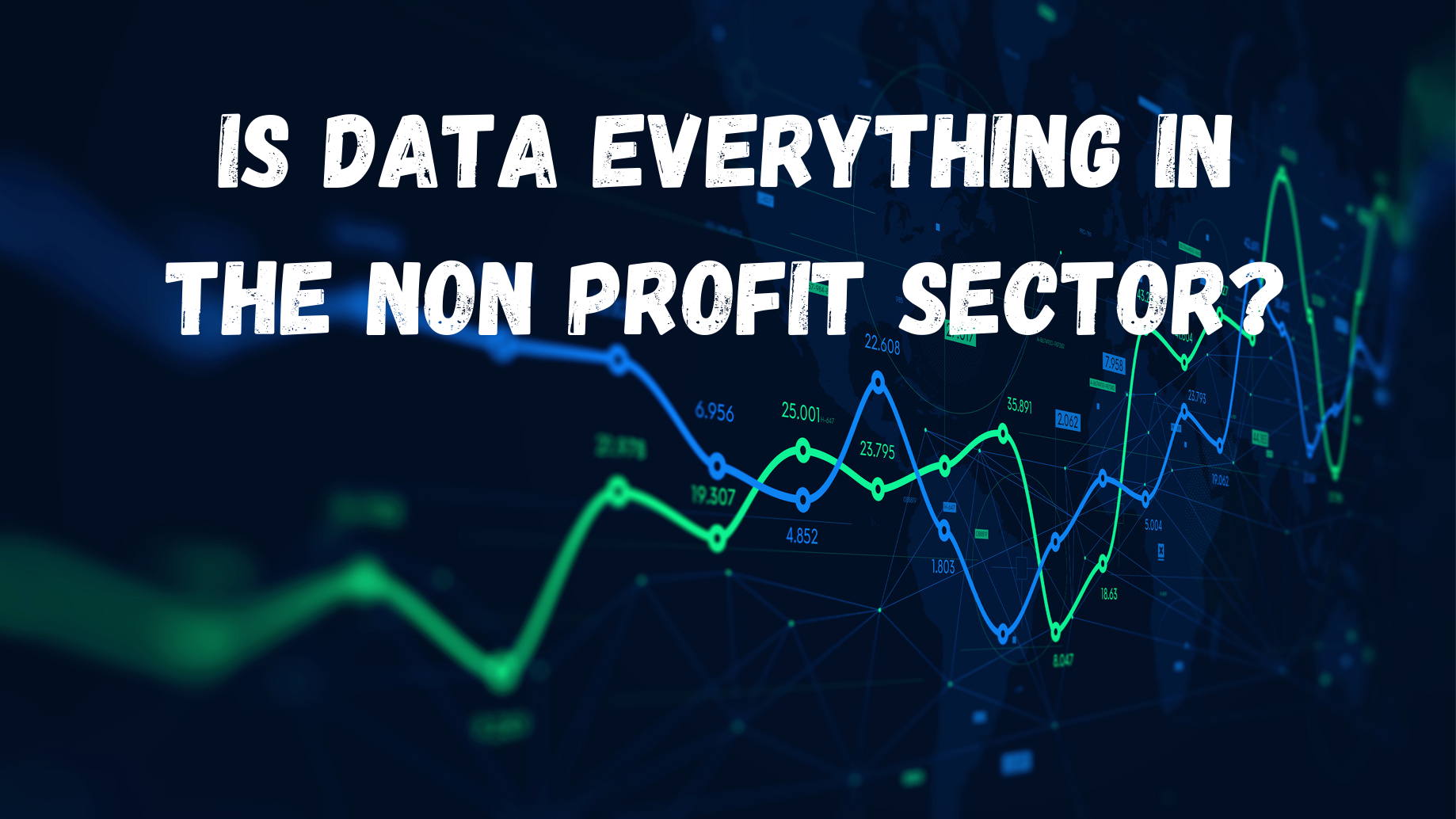 Is Data Everything in the Non Profit Sector